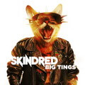 Descargar Skindred