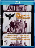 Descargar The Black Crowes – Freakn Roll Into The Fog.