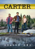 Descargar Carter Temporada 1